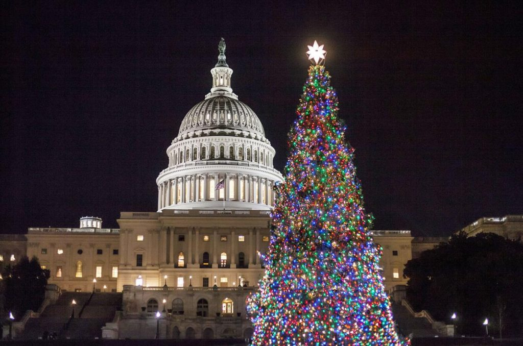 Sapin de noel de luxe Washington D.C
